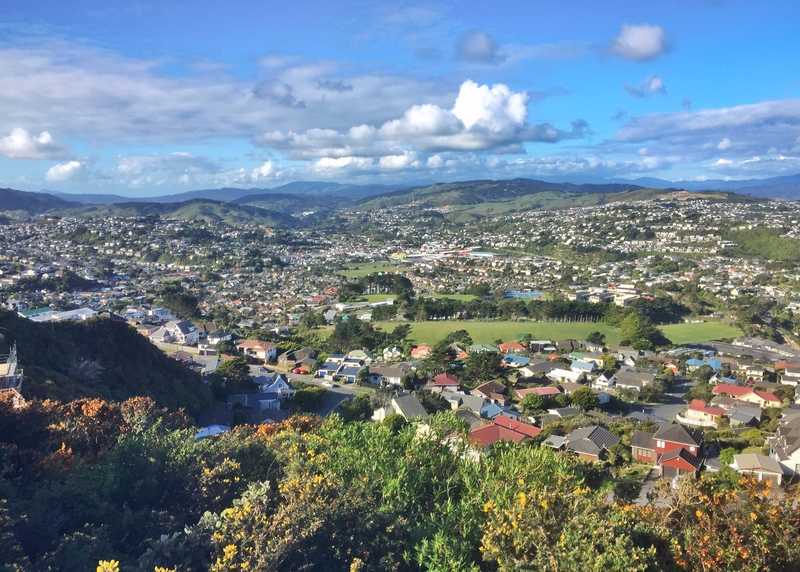 mount kaukau views