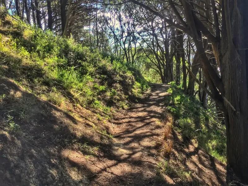mount victoria hike