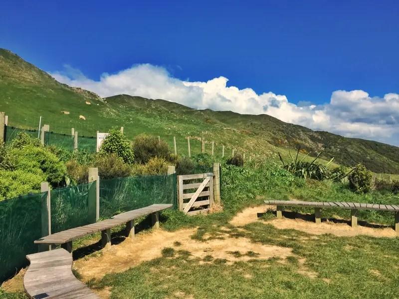 paekakariki escarpment summit