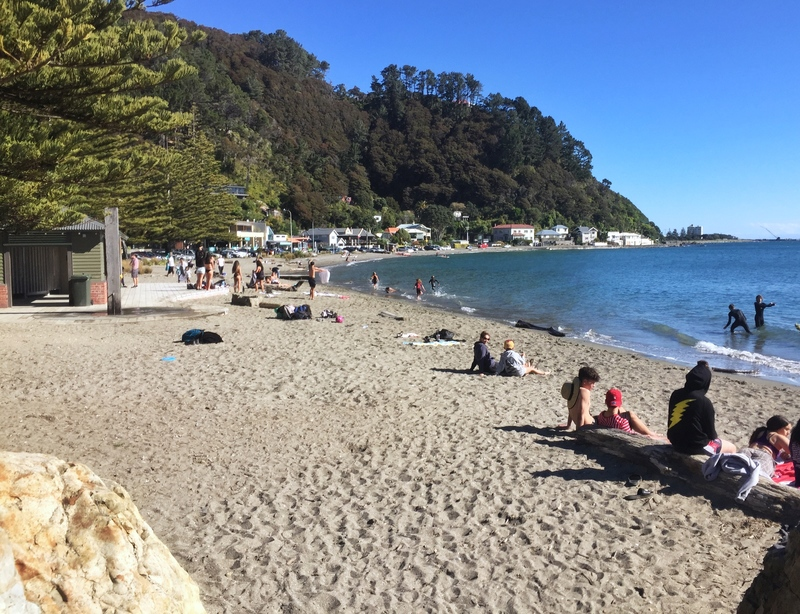 days bay wellington