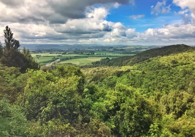 manawatu gorge plains