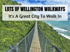 wellington home page recent post