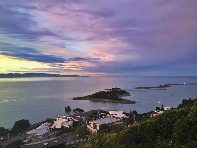 nelson sunsets