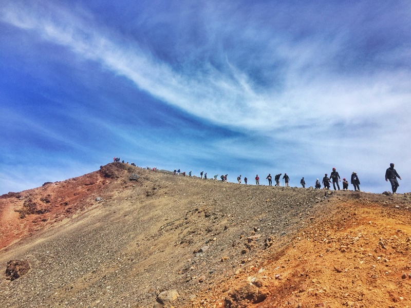 tongariro cross is a place to go after wellington
