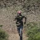 Jutaan Belalang Serang Pakistan Somalia