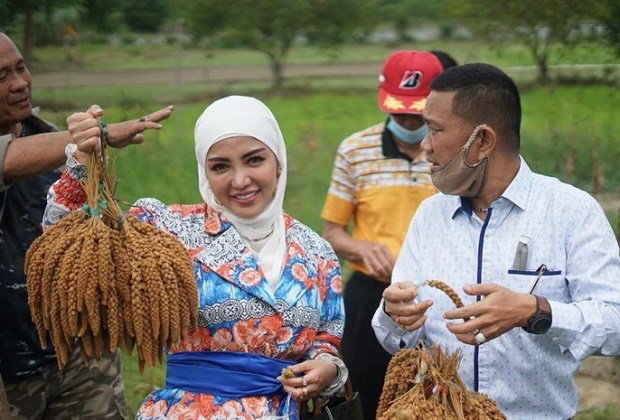 Bantu Petani, Bella Shofie Ngaku Lebih Nikmat Hidup di Desa