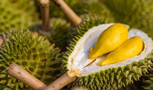 Tak Hanya Lezat, Berikut ini Manfaat Durian untuk Kesehatan