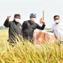 Bos PKS-Ridwan Kamil Panen Raya Bareng, Pengamat: Cek Ombak Pencapresan