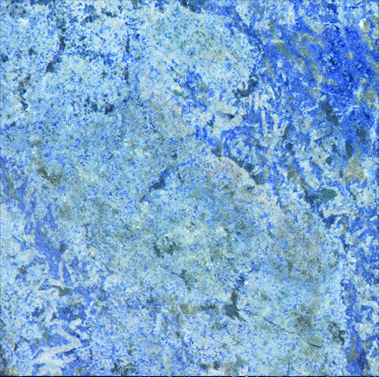 http www digimarc com cgi bin ci pl 4 367041 0 2011 5