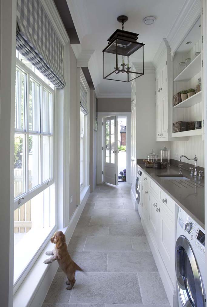 puppy peering out window in hallway utility area