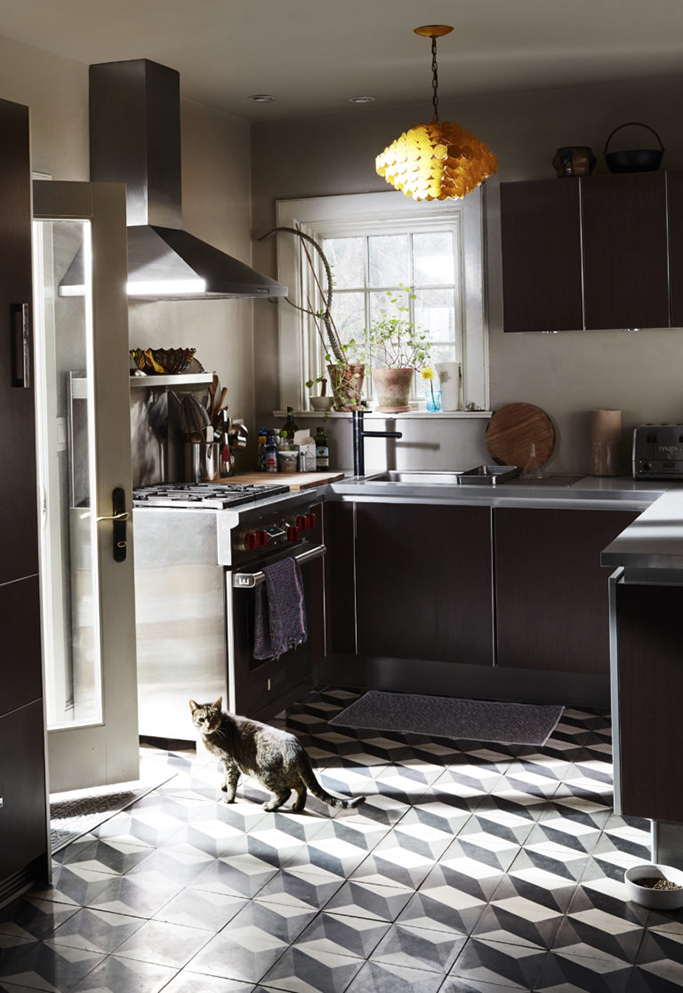 cat in sunlit kitchen with pattern tiles