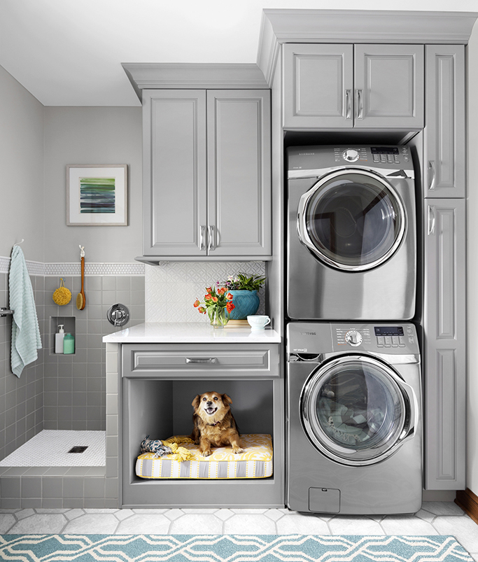 dog in utility room