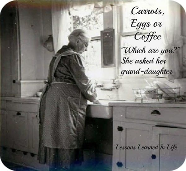 tilestwra.com | Μερικά καρότα, αυγά και λίγος καφές είναι αρκετά για να δώσει αυτή η γιαγιά ένα μάθημα ζωής στην εγγονή της