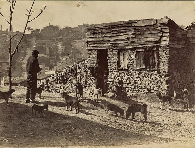 Istanbul from 1870s-1900s (4)