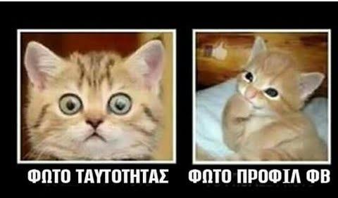 αστεία ρωσική ραντεβού φωτογραφίες καλύτερο site γνωριμιών Μπαλί