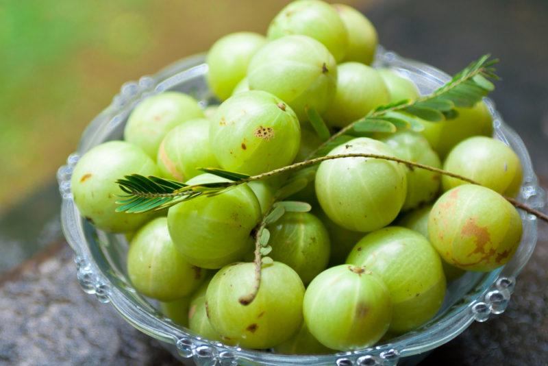 indian-gooseberry-e1467121209153