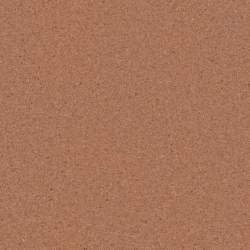Cork board seamless texture