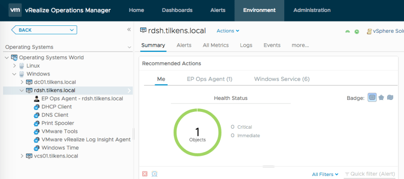 vROps Automatic Specific Services