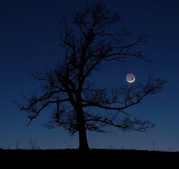 lunar_limb
