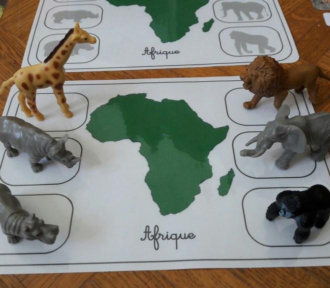 Géographie et zoologie : les animaux du monde