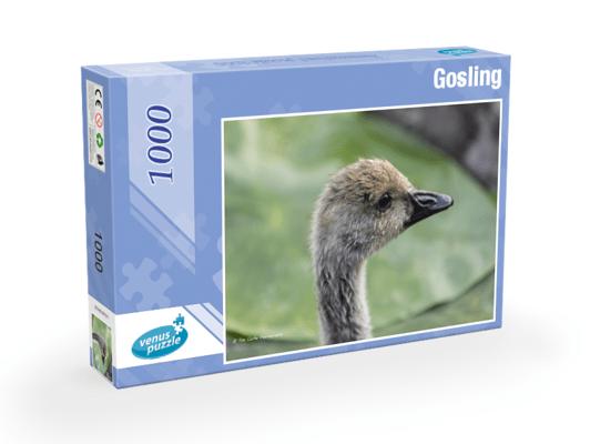 Gosling 1,000pc Jigsaw Puzzle