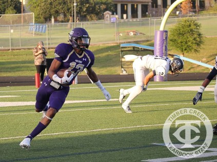 The Creek Yearbook photographers captured Purple Out game day highlights on Sept. 8, 2016. (Photo by Josh Haynes)
