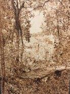 "Jolene Pinto's piece ""Grove"" received a Gold Seal."