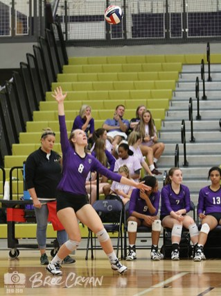 Photos of the 2018 TCHS Volleyball team. (Photos by The Creek Yearbook photographer Bree Cryan)