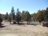 Looking South from homesite. You can see drive and wildlife tank.