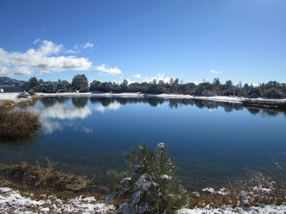Timberon fishing lake timberon water sanitation district for New mexico fishing license cost