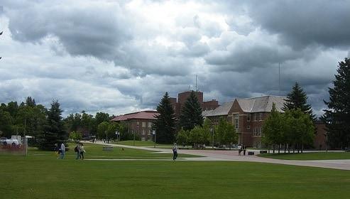 Montana State