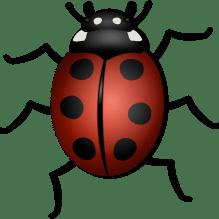 ladybug-156624_1280