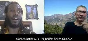 Okunini Obadele Bakari Kambon on Racism, Gandhi, Ambedkar, white world terror domination and India's caste system