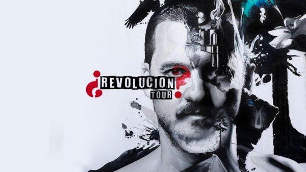 Portada de ¿Revolución?