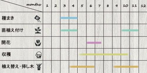 schedule_lavender
