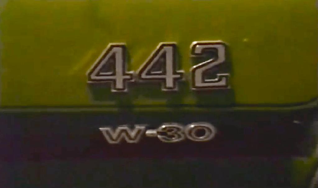 W30VIDEO-2