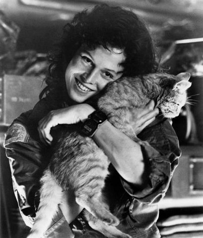Ripley and Jones the Cat