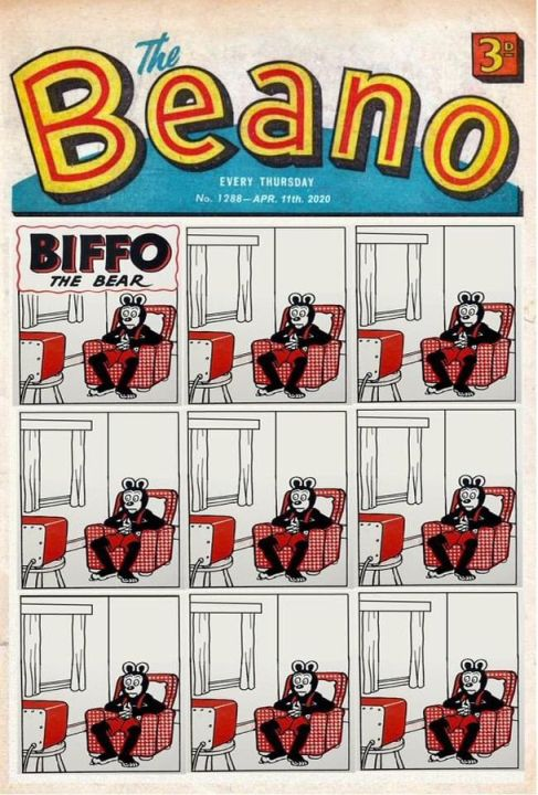 Biffo the Bear in Lockdown