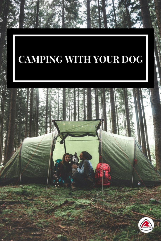 10 reasons why camping with your dog is good for your soul