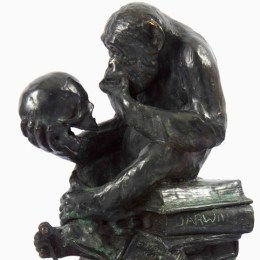 Darwin's Monkey - Square
