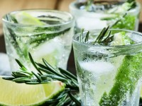 Gin-Tonic Can Help Remedy Kidney Stones, Kidney Disease and Strengthen Urinary Tract against Infection