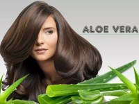 Miraculous Benefits of Aloe Vera for Hair