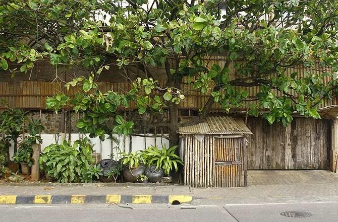 Rekha house
