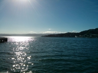 Sonnenschein in Wellington