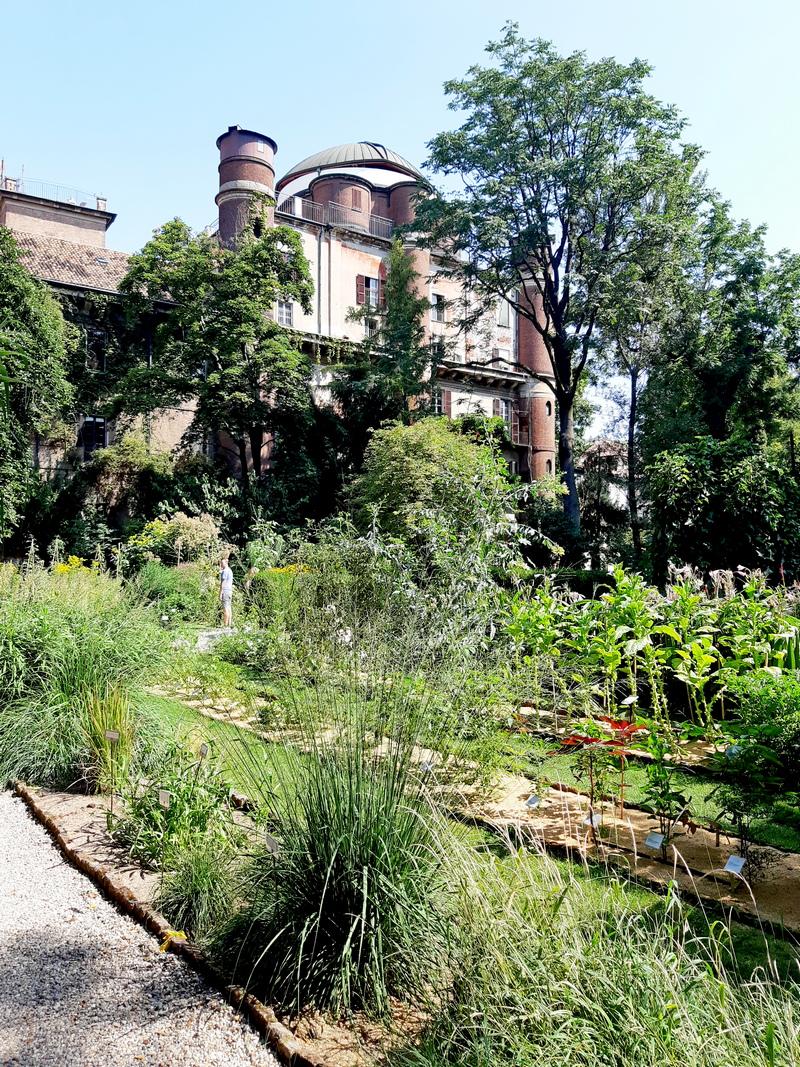 Milaan_Botanische tuin van Brera