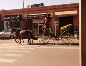 Lege-koets Marrakech coronavirus Marokko