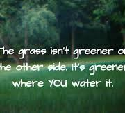 The Grass is Always Greener on the Other Side