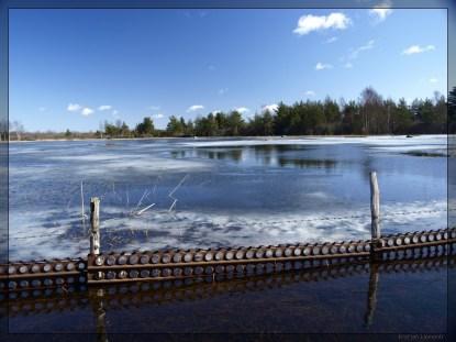 Kevadine heinamaa, Saaremaal