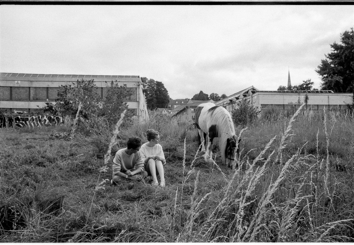 A young couple sits amongst tall grass, looking across at a horse grazing illegally