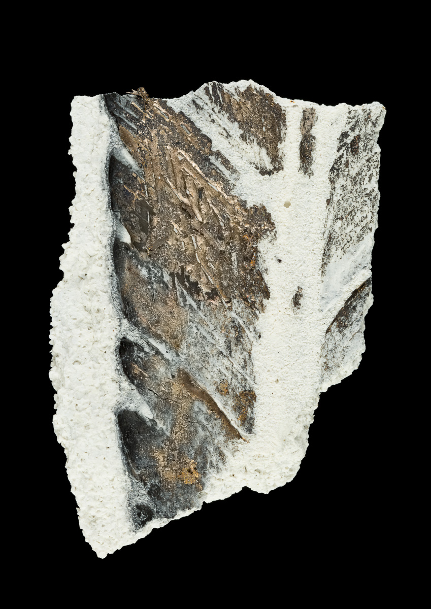 Feather impression with traces of bronze in fragment of ceramic casting case.